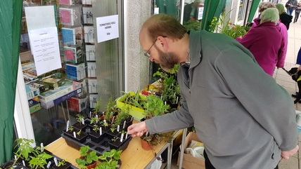 Chris looking at plants, plant sale May 2017